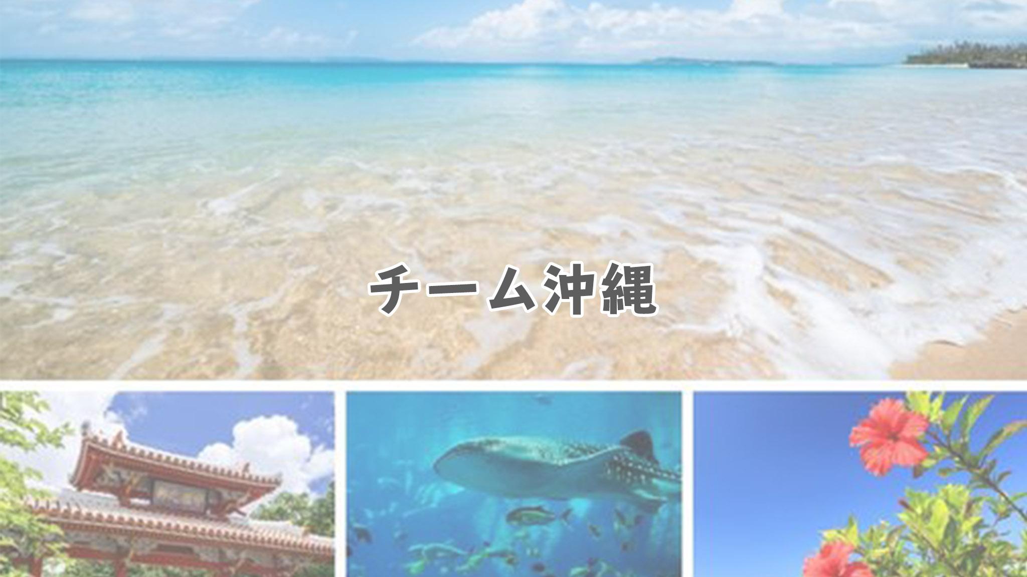 チーム沖縄