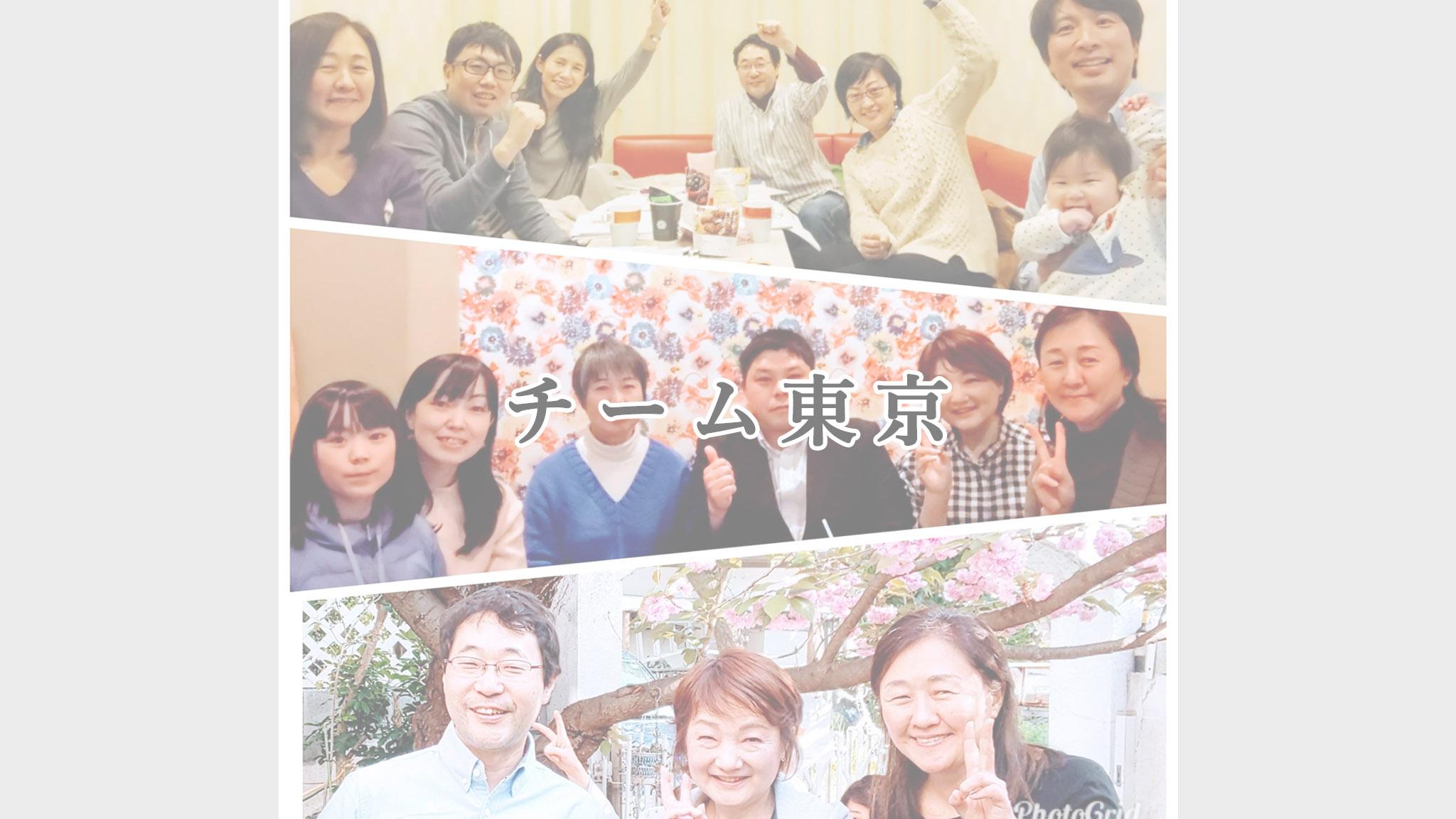 チーム東京の活動